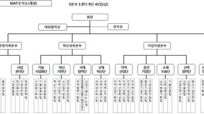 KIAT, 석영철 원장 취임 한 달 만에 조직개편…규제혁신단 신설
