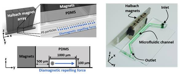 미세유체 채널에 자석을 배치해 폴리스티렌 입자의 속도를 측정하는 플랫폼.