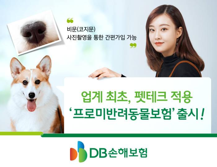 DB손해보험, 코지문 기반 '프로미반려동물보험' 출시