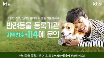 KTCS·KTIS, 반려동물 등록기관 조회 서비스 실시