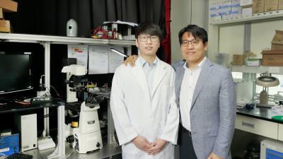 UNIST, 거품 구조 이용한 '대면적 나노 패터닝 기술' 개발