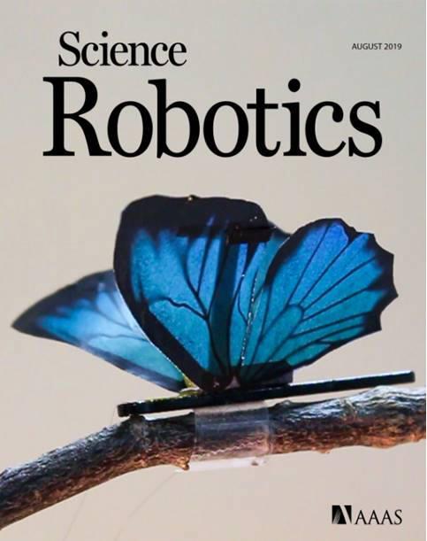 연구팀이 새로 개발한 액츄에이터로 개발한 나비 날개짓 예술 소품. 이 소품 모습은 사이언스 로보틱스 8월호에 표지 이미지로 실렸다.