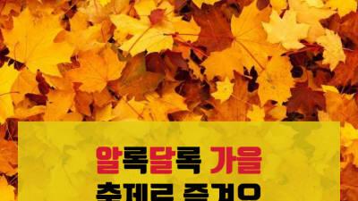 {htmlspecialchars([카드뉴스]알록달록 가을, 축제로 즐겨요)}