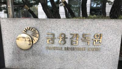 금감원, 보험회사 12개 대상 K-ICS 현장방문 컨설팅