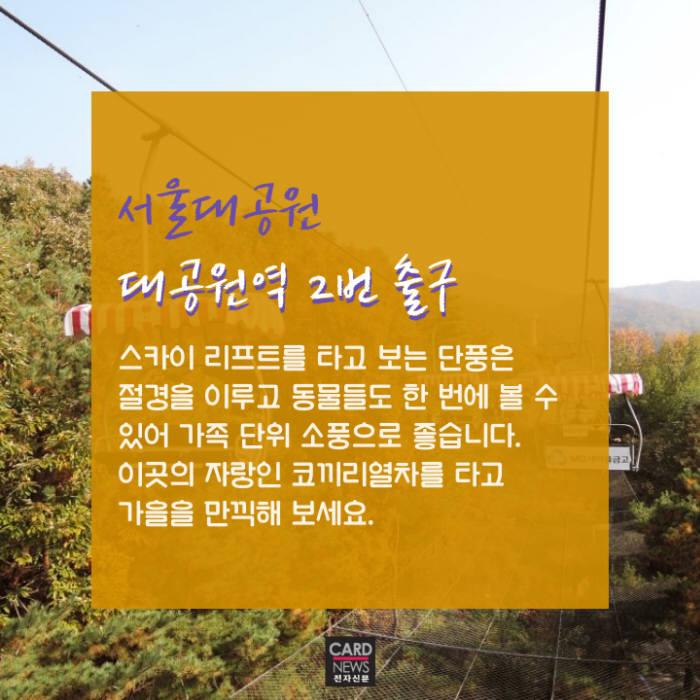 [카드뉴스]지하철로 떠나는 가을 피크닉 '서울 단풍명소'