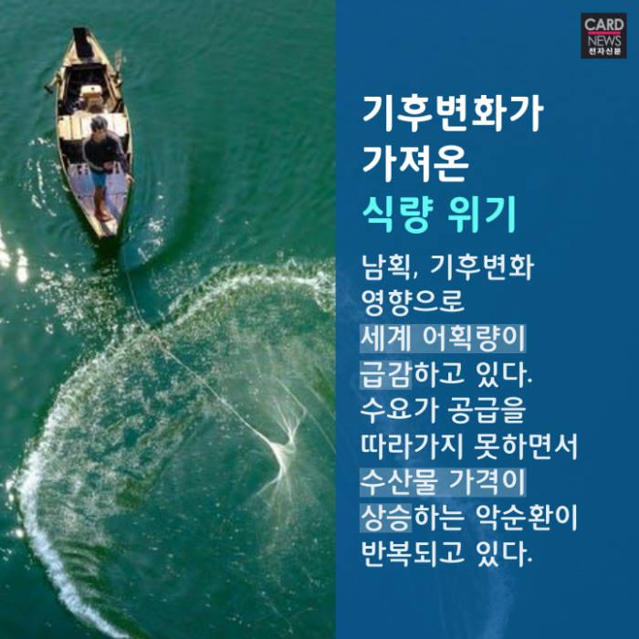 [카드뉴스]바다 위 산업혁명 '아쿠아팜'