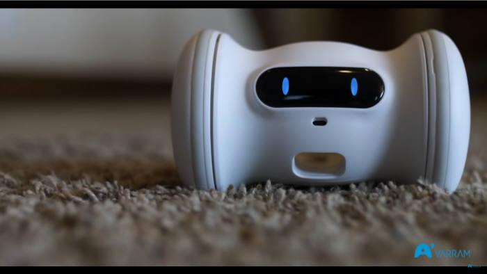 펫 피트니스 로봇 바램(VARRAM)은 LG유플러스의 펫 케어 서비스 U+스마트홈 펫케어에서 제공되고 있다. [사진=바램]
