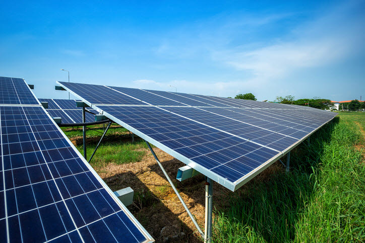 '보성 녹차밭' '파주 콩밭'에도 태양광 설치