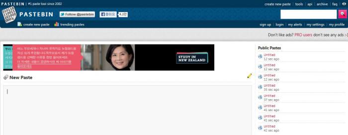 익명 문서공유 사이트 `페이스트빈` 가입자 100만명 돌파
