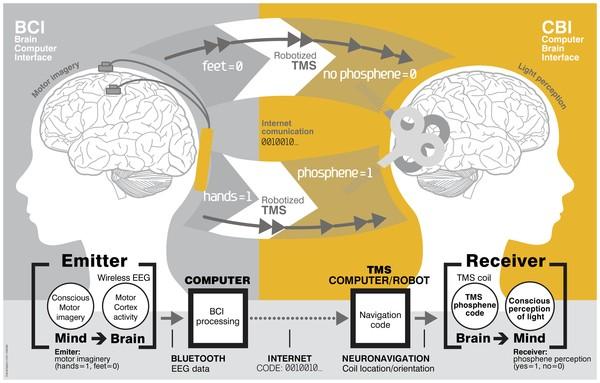 인터넷으로 뇌에 직접 메시지 보낸다?