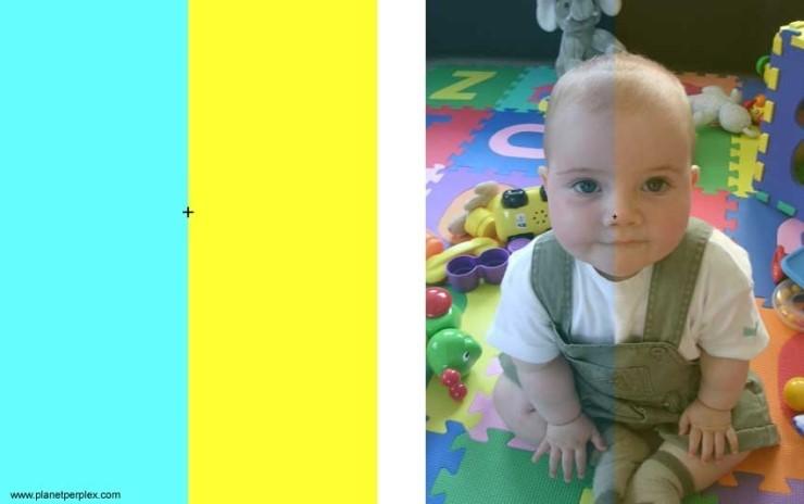 △ 시각세포의 색 순응을 확인할 수 있는 테스트 이미지. 왼쪽 가운데 점을 30초 동안 본 다음 오른쪽 사진을 보면 된다.