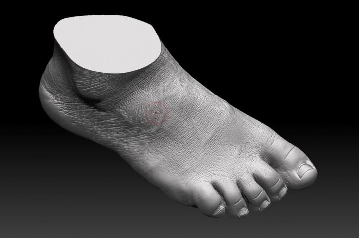 3D 스캐너로 본 뜬 네덜란드 고객의 발모양