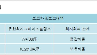 [ET투자뉴스][한진칼 지분 변동] 유한회사그레이스홀딩스 외 8명 1.31%p 증가, 17.29% 보유