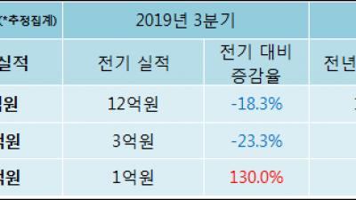 [ET투자뉴스]신라섬유, 19년4분기 실적 발표