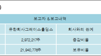 [ET투자뉴스][한진칼 지분 변동] 유한회사그레이스홀딩스 외 8명 5.02%p 증가, 37.08% 보유
