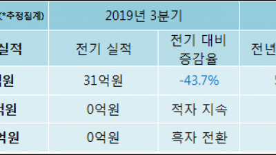 [ET투자뉴스]넥스턴, 19년4분기 실적 발표