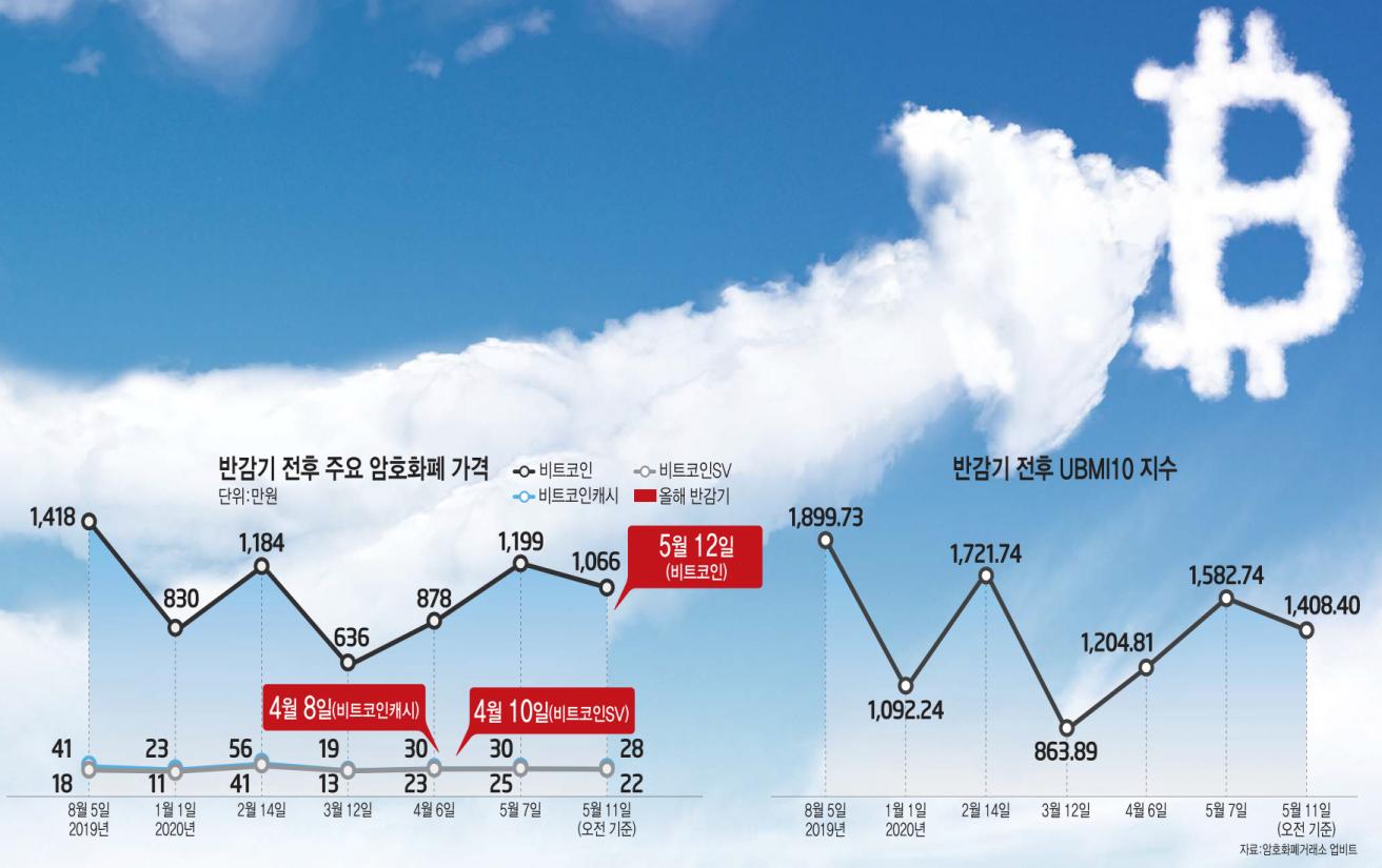 [이슈분석]비트코인 '세 번째 반감기' 시작…가격 '껑충'·상승세 보장 '미지수'
