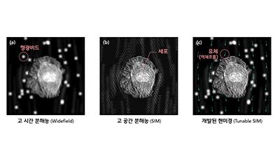 박정훈 UNIST 교수, 세포와 유체 동시 관찰 성공