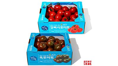 공영라방, 축제 취소된 '화천 토마토' 라이브커머스로 판로지원