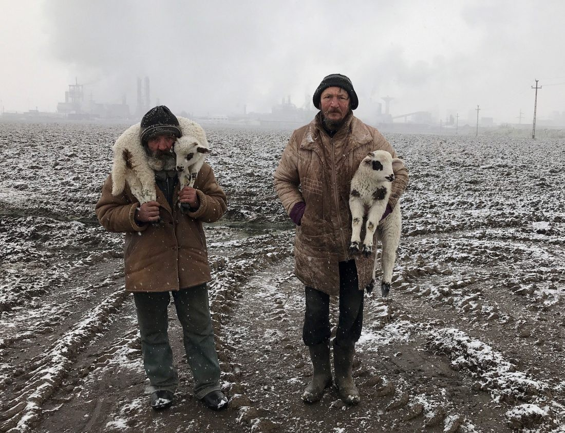 Transylvanian Shepherds © Istvan Kerekes - IPPAWARDS