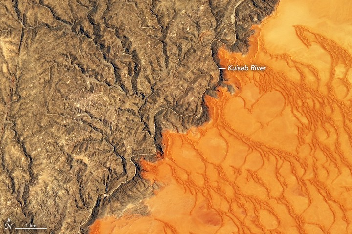 Where the Dunes End. 사진=NASA Earth Observatory