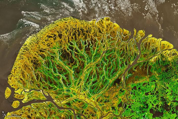 알래스카 서쪽 해안 유콘 삼각주(Yukon-Kuskokwim in Colorful Transition). 사진= NASA Earth Observatory