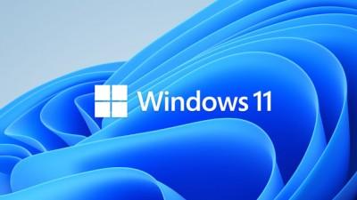 MS '윈도11' 설치했는데...윈도10으로 돌아가고 싶다면?