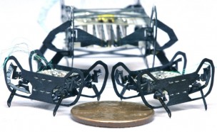 '1센트'보다 작은 초소형 로봇