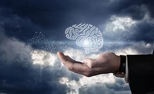뇌 구조 정확히 볼 수 있는 3차원 분석기술