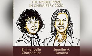 노벨 화학상 '유전자 가위' 개발한 佛·美 공동 수상