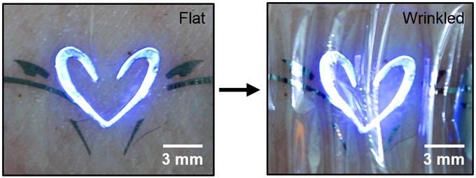 IBS 나노입자연구단이 개발한 초박형 고해상도 QLED 디스플레이를 피부에 부착한 모습.