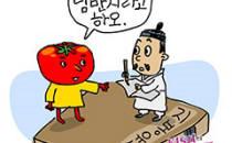 토마토, 미국서는 채소?