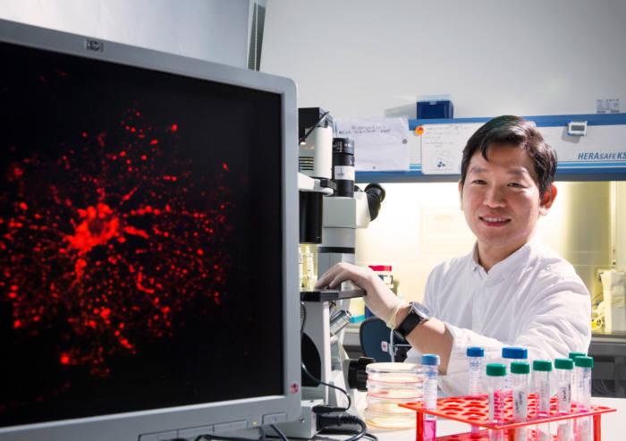 그래핀을 이용해 인간 역분화줄기세포 배양에 성공한 김정범 교수