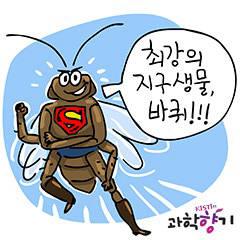 [KISTI 과학향기]바퀴벌레 초당 25회 방향전환 가능...과기계 엄청난 능력 모사 한창