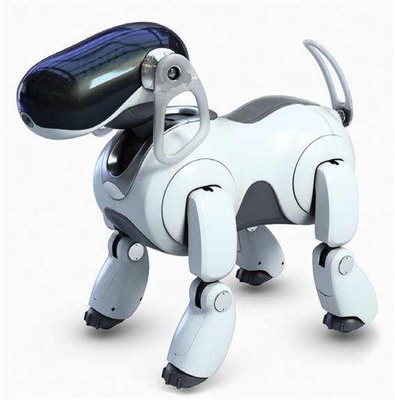 20분 만에 3000대가 판매된 소니의 250만원 짜리 로봇 강아지 아이보(자료:소니)