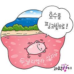 [KISTI과학향기]플랑크톤이 만드는 핑크빛 호수의 비밀