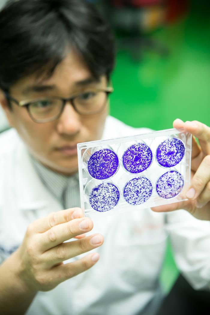 쎌바이오텍 연구진이 장내 미생물에 대해 연구하고 있다.