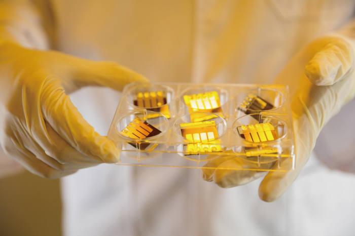UNIST가 개발한 페로브스카이트 태양전지 셀.