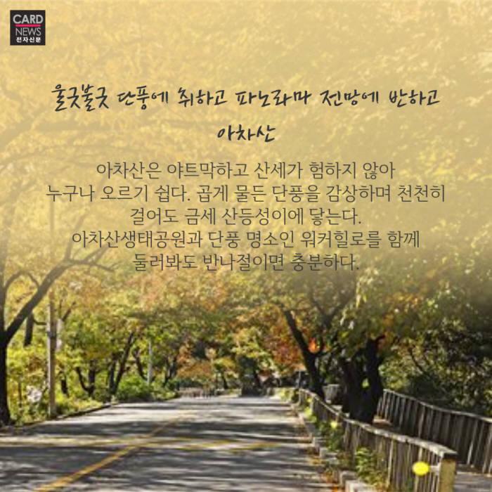 [카드뉴스]가는 가을 아쉬워~ 강秋 11월 여행지