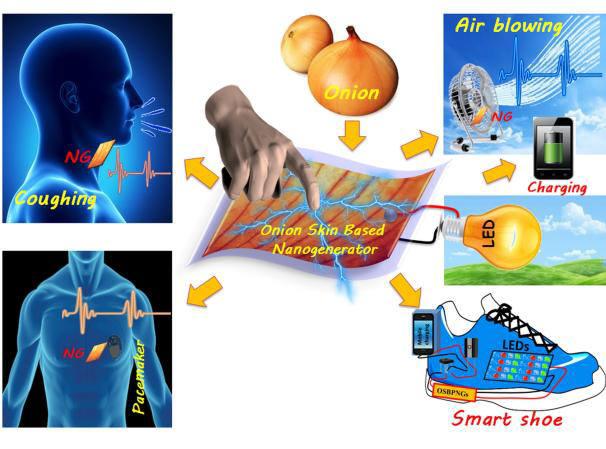 김진곤 교수 연구팀이 개발한 양파껍질 셀루로스 성분 고효율 압전소자 개념도