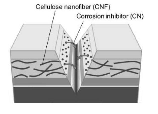 사진3. 셀룰로오스 나노섬유를 운반자로 한 부식방지 개념도. 출처: 자가치유코팅 기술동향, KISTI 2014