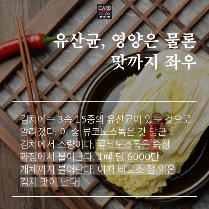 [카드뉴스]김치 맛의 비밀