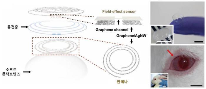 사진 3. 박장웅 UNIST 교수팀이 개발한 스마트 콘탠트 렌즈의 구조. 나노 기술을 접목해 기술 스마트 렌즈가 시야를 가리는 문제를 해결했다. (출처 : UNIST)