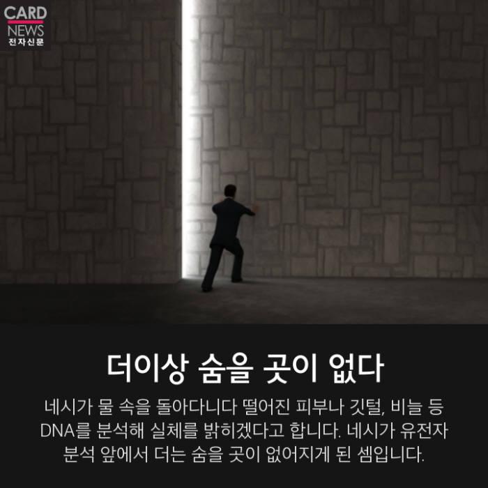 [카드뉴스] 네스 호의 괴물 '네시' 실체 벗나