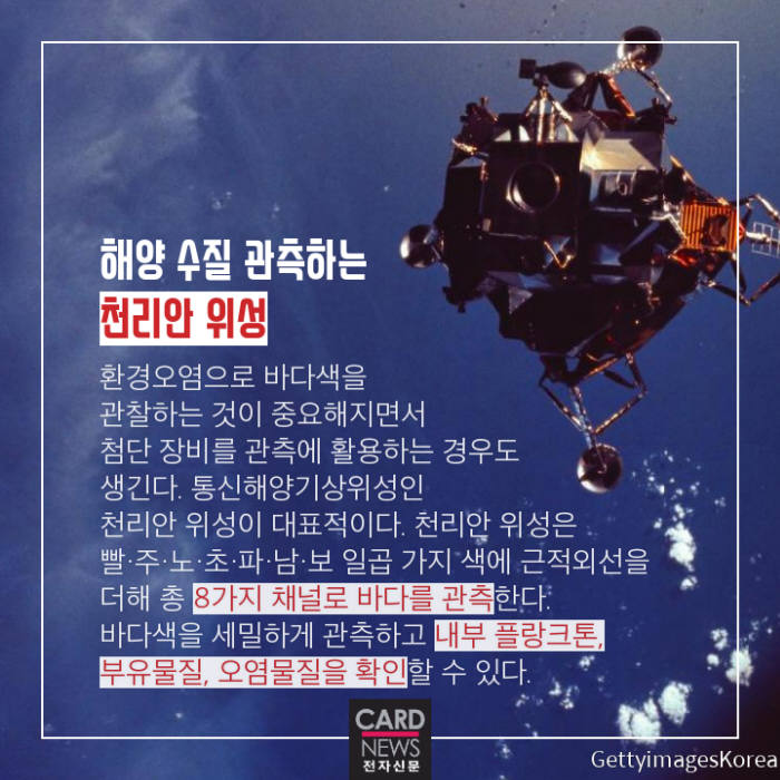 [카드뉴스]붉으락푸르락 '바다색의 비밀'
