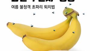 여름 불청객 '초파리' 퇴치법