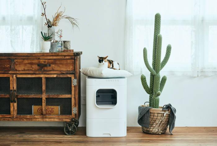 [굿!초이스 중소기업 우수제품]골골송작곡가 스마트 고양이 자동화장실 '라비봇'