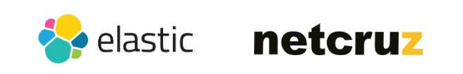 넷크루즈, 빅데이터 분석 플랫폼 '빅아이 v1.0'으로 보안관제 시장 새 이정표 제시