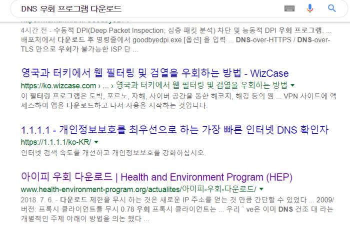 DNS·IP 우회 프로그램 찾다 '랜섬웨어' 감염된다