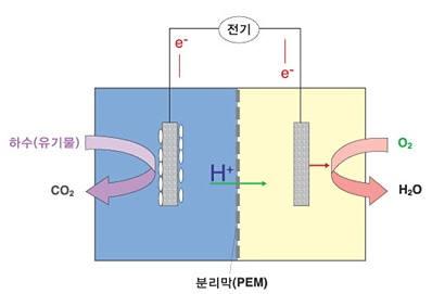 전형적인 미생물연료전지의 구조. 폐수를 분해하 생성된수소이온과 전자는 각각 분리막과 외부회로를 통해 산화전극에서 환원전극으로 이동하게 되는데, 이때 수소이온은 환원전극부 내 존재하는 산소와 같은 최종 전자 수용체와결합함으로써 물이 생성되며, 동시에 외부회로에서의 전자의 이동으로 전기가 생성된다. (출처